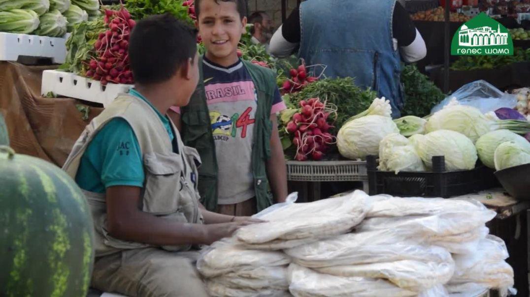 Быт в Шаме (выпуск 2) | Рынки на благословенных землях Шама