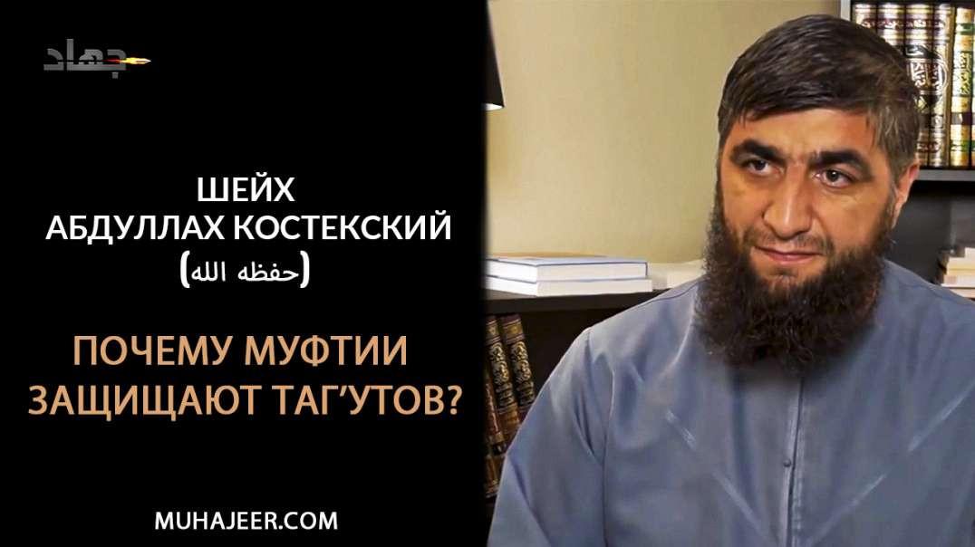 Шейх Абдуллах Костекский (حفظه الله) - Почему муфтии защищают таг'утов?