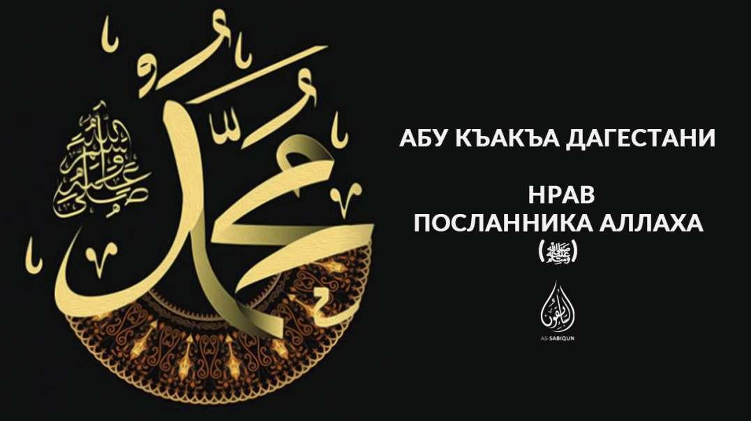 Нрав Посланника Аллаха (ﷺ)