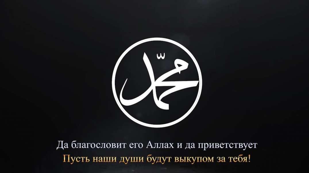 Защита Посланника Аллаха ﷺ